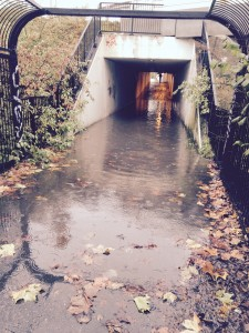 Fingal have agreed to examine flooding at the M50 pedestrian tunnel
