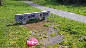 Coolmine Woods 2 (1)